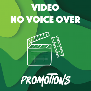 VIDEO NO VOICE