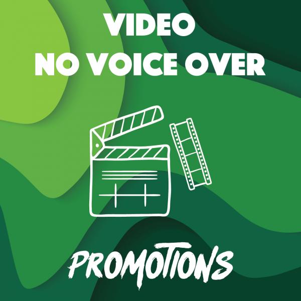 VIDEO NO VOICE